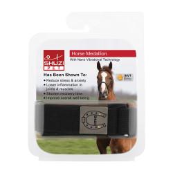 SHHM002 Horse Medallion (Ti)